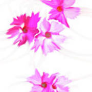 Smudged Floating Pink Flowers Poster
