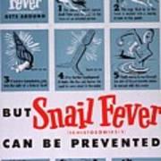 Snail Fever Poster