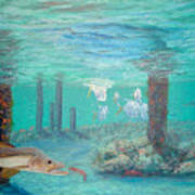 Snook Painting Poster