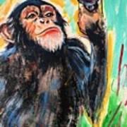 Snooty Monkey Poster