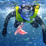 Snorkeling At The Great Barrier Reef Poster