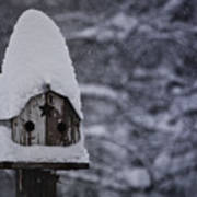Snow Covered Elf Birdhouse Poster