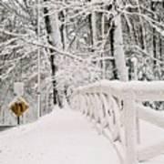 Snow Curve Poster