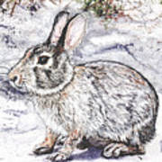 Snow Day Bunny Poster