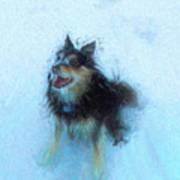 Snow Dog  Poster