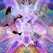 Snow Goose Moon Poster