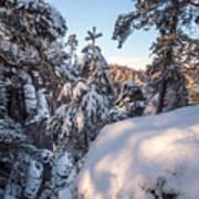 Snow In Saxon Switzerland Poster