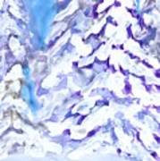 Snow Laden Trees Poster