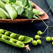 Snow Peas Or Green Peas Still Life Poster