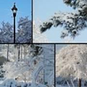 Snow Scenes Of Charleston Sc Poster