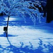 Snow Shadows Poster