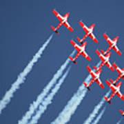 Snowbirds In Flight Poster