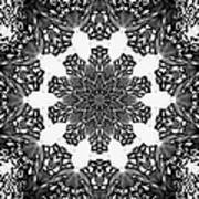 Snowflake 13 Poster