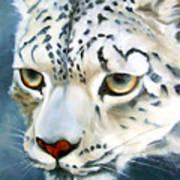 Snowleopard Poster
