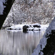 Snowy Bear River Poster