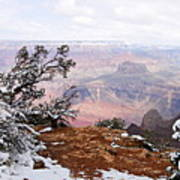 Snowy Frame - Grand Canyon Poster