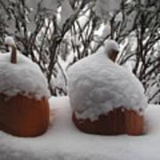 Snowy Pumpkins Poster