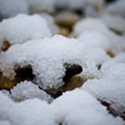 Snowy Stones Poster