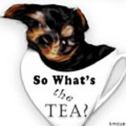 So What's The Tea? Poster