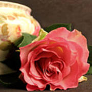 Soft Antique Rose Poster
