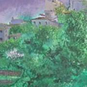 Solitary Almond Tree In Blossom Mallorcan Valley Poster