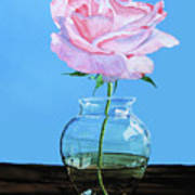 Solitary Rose Poster