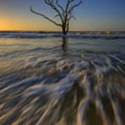Solitude At Botany Bay Poster