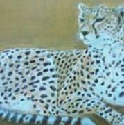 Sonia The Cheetah II Poster