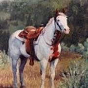 Sophie Flinders Paint Mare Horse Portrait Painting Poster