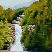 South Carolina Waterfall Poster