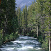 South Fork San Joaquin River - Kings Canyon National Park Poster