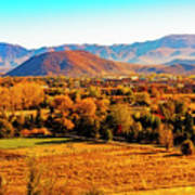 South Reno In Fall Poster