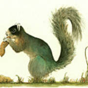 Southern Fox Squirrel Peanut Poster