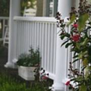 Southern Summer Flowers And Porch Poster