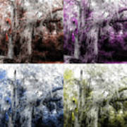 Spanish Moss Beauty Of Color Poster