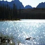 Sparkling Redfish Lake Poster