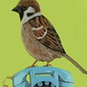 Sparrow Perched On Vintage Telephone Poster