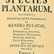 Species Plantarum, Linnaeus, 1753 Poster