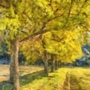 Spectacular  Fall Foliage Pencil  Poster