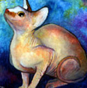 Sphynx Cat 5 Painting Poster