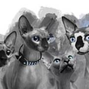Sphynx Group No 02 Poster