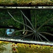 Spider Window Poster