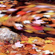 Spinning Leaves Of Autumn Poster