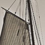 Spirit Of South Carolina Schooner Sailboat Sail Poster