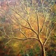 Spirit Tree 5 Poster