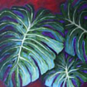 Split Leaf Philodendron Poster