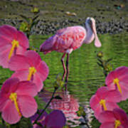 Spoonbill Through The Flowers Poster