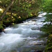 Sprague Creek Glacier National Park 2 Poster