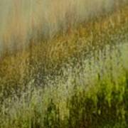Spring Abstract Poster