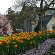 Spring At Spring Grove Poster